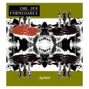 Austere/The Joy Formidable