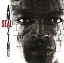 Amazing/Seal
