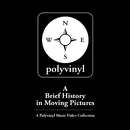 A Brief History In Moving Pictures: A Polyvinyl Music Video Collection/Various Artists