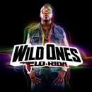Wild Ones/Flo Rida