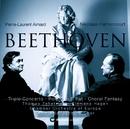 Beethoven: Triple Concerto, Choral Fantasia & Rondo/Nikolaus Harnoncourt