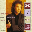 Greatest Hits Vol. II/Gary Morris