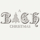 The Bach Christmas Experience/Experience