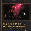 Live Monsters/Big Head Todd and The Monsters
