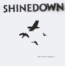 What A Shame/Shinedown