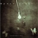 Seduction/Boney James