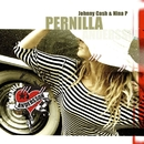 Johnny Cash & Nina P./Pernilla Andersson