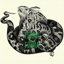 Terra Firma (1 track DMD)/The Young Knives
