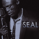 I Can't Stand The Rain/Seal