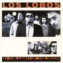 By The Light Of The Moon/Los Lobos