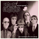At Full Speed - The Complete Sire Recordings/Flamin' Groovies