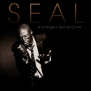 A Change Is Gonna Come/Seal