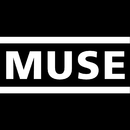 The Groove In The States/Muse