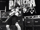 Domination (Live)/Pantera