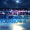 The World As You Know It/Todd Watson & Jason Singh