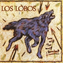 How Will the Wolf Survive?/Los Lobos