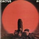Cactus/Cactus