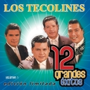 12 Grandes exitos Vol. 1/Los Tecolines