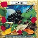 Lambrusco & pop corn/Ligabue