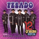 12 Grandes exitos  Vol. 2/Pesado