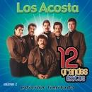 12 Grandes exitos Vol. 2/Los Acosta