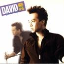 David David/David Huang