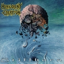 Stillborn/Malevolent Creation