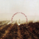 Tooth of Crime/T-Bone Burnett