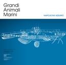 Napoleone azzurro/Grandi Animali Marini