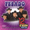 12 Grandes exitos  Vol. 1/Pesado