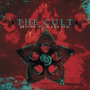 Beyond Good and Evil/The Cult