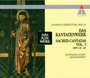 Bach, JS : Sacred Cantatas Vol.7 : BWV 119-137/Nikolaus Harnoncourt