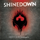 Somewhere In The Stratosphere/Shinedown