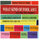 What Kind Of Fool Am I & Other Show Stoppers/Sammy Davis Jr.