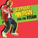 Feel The Steam (feat. Chris Brown) (International)/Elephant Man