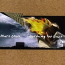 Burning The Daze/MARC COHN