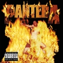 Reinventing The Steel/Pantera