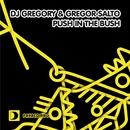 Push In The Bush/DJ Gregory & Gregor Salto