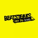 Hey Du [Live - St. Gallen Open Air/St. Gallen]/Beatsteaks