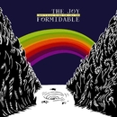 I Don't Want To See You Like This (Deluxe Single)/The Joy Formidable