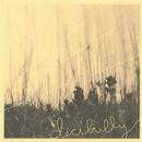 3 Song Sampler/Decibully