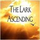 The Lark Ascending/Andrew Davis