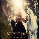 In Your Dreams/Stevie Nicks