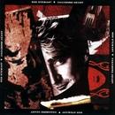 Vagabond Heart/Rod Stewart