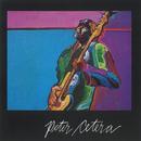 Peter Cetera/Peter Cetera