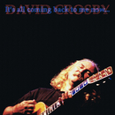 It's All Coming Back To Me Now/David Crosby