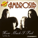 How Much I Feel & Other Hits/Ambrosia
