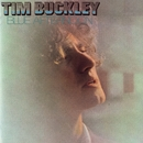 Blue Afternoon/Tim Buckley