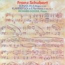Schubert: Sonata In A Major, D. 959 / Klavierstuck In E Flat Minor, D. 946, No. 1/Richard Goode