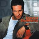 Precisamente ahora/David Demaria